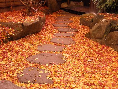 秋月の紅葉II