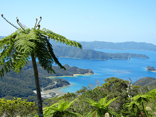 奄美大島南端・油井岳から望む大島海峡