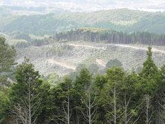 自然破壊が進む「エコパークかごしま」周辺
