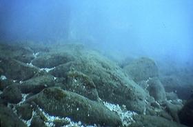 玄海排水口 記事用2-thumb-500x330-10057.jpg
