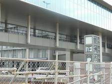 豊洲市場.jpg