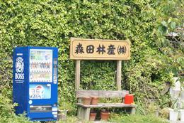 森田1.JPG